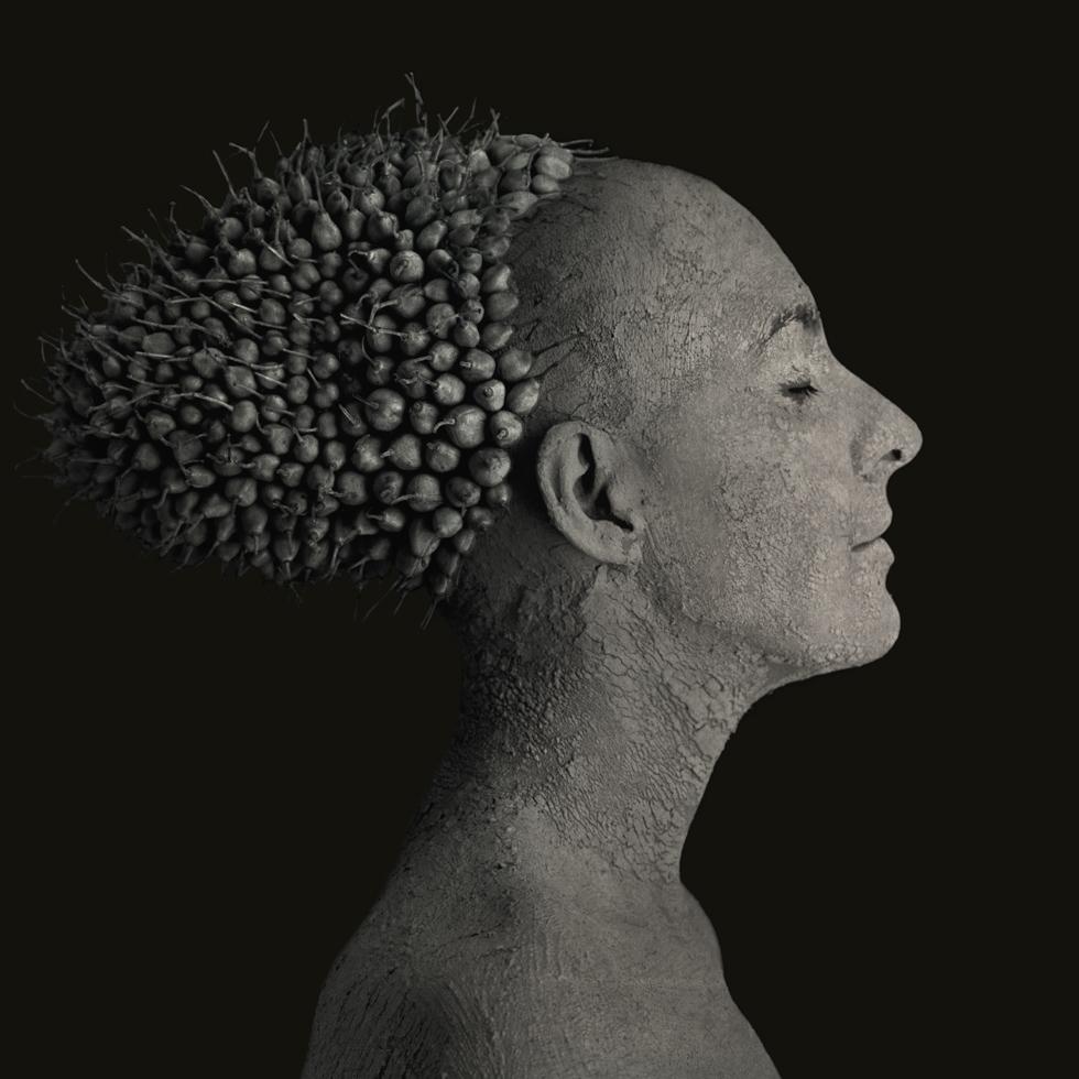 Roberto Kusterle, dalla serie Mutazione silente