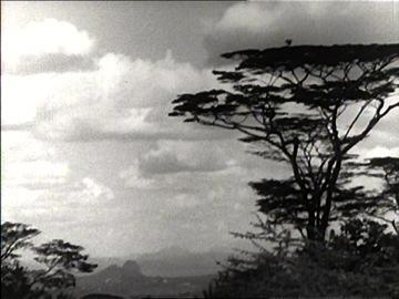 Fotogramma daAppunti per un'Orestiade africana(1970)