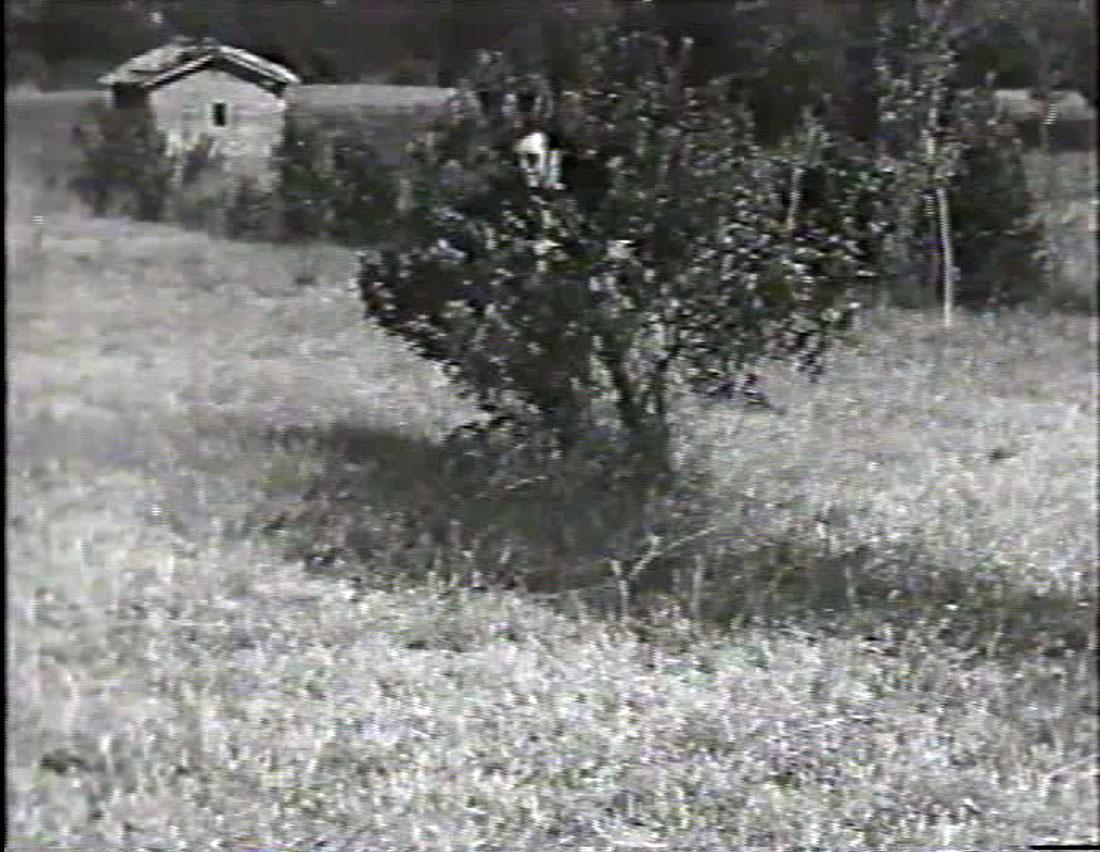 Giosetta Fioroni, fotogramma dal film Gioco, 1967
