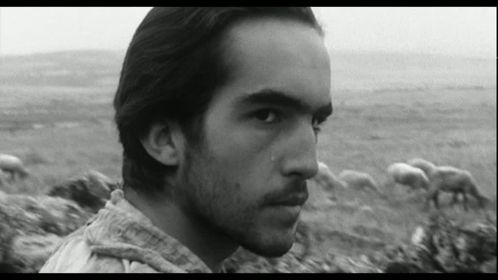Fotogramma daIl Vangelo secondo Matteo(1964)