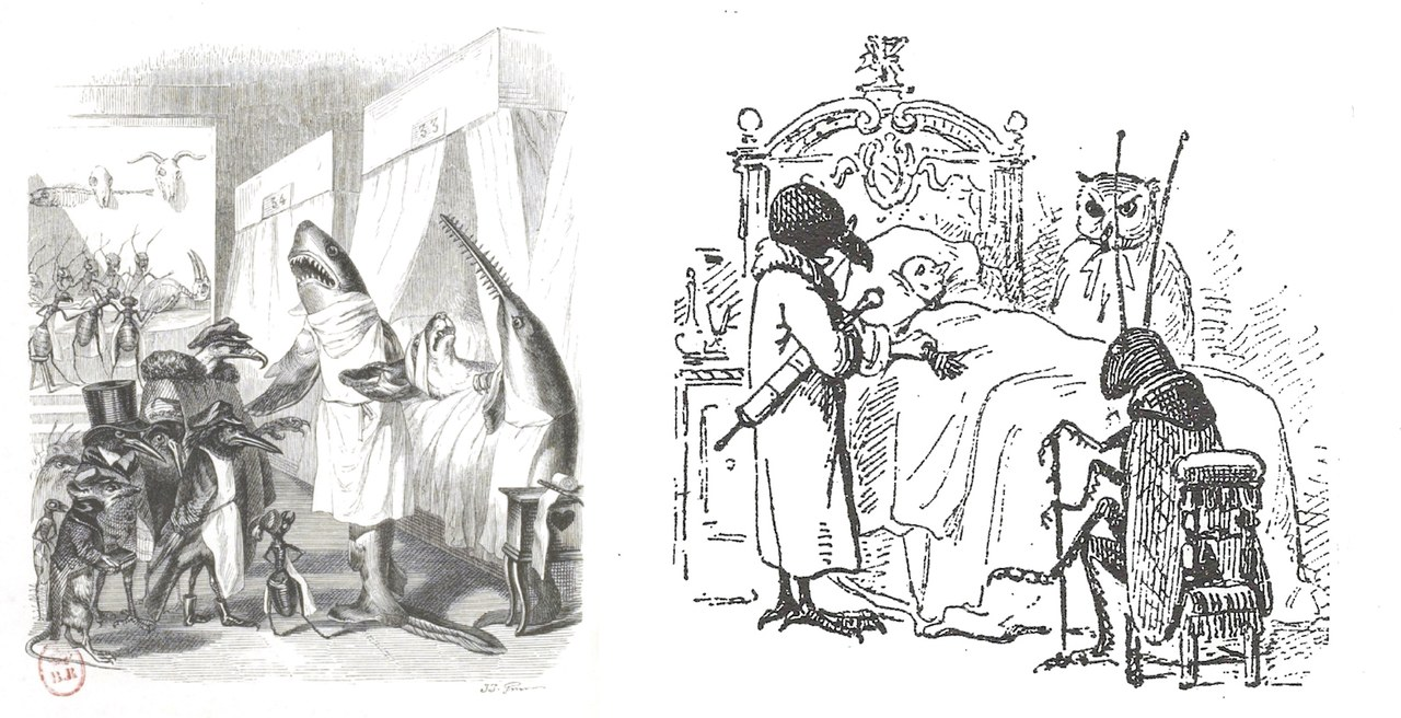 Fig. 2. Grandville,Les Animaux médecins, illustrazione perScènes de la vie privée et publique des animaux(1840); a destra Enrico Mazzanti,I tre medici, illustrazione daPinocchio(1883)