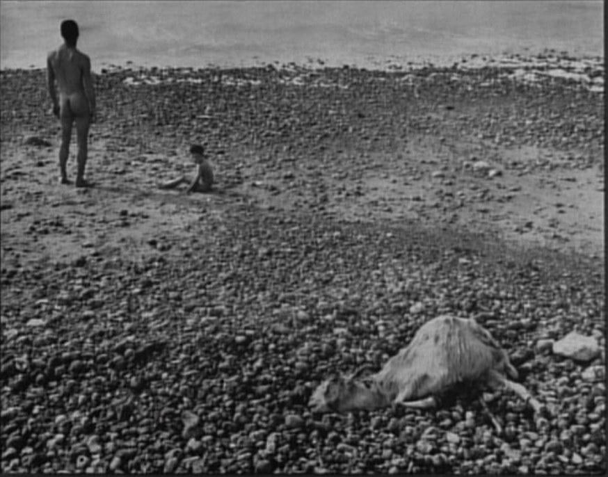 La fotografia la centro della diegesi di Ulysse (1982) © Ciné-Tamaris