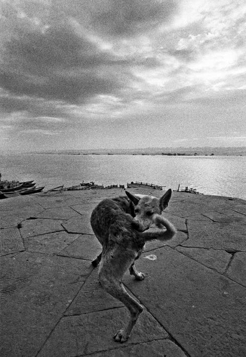 Varanasi, India, 1972 © Ferdinando Scianna